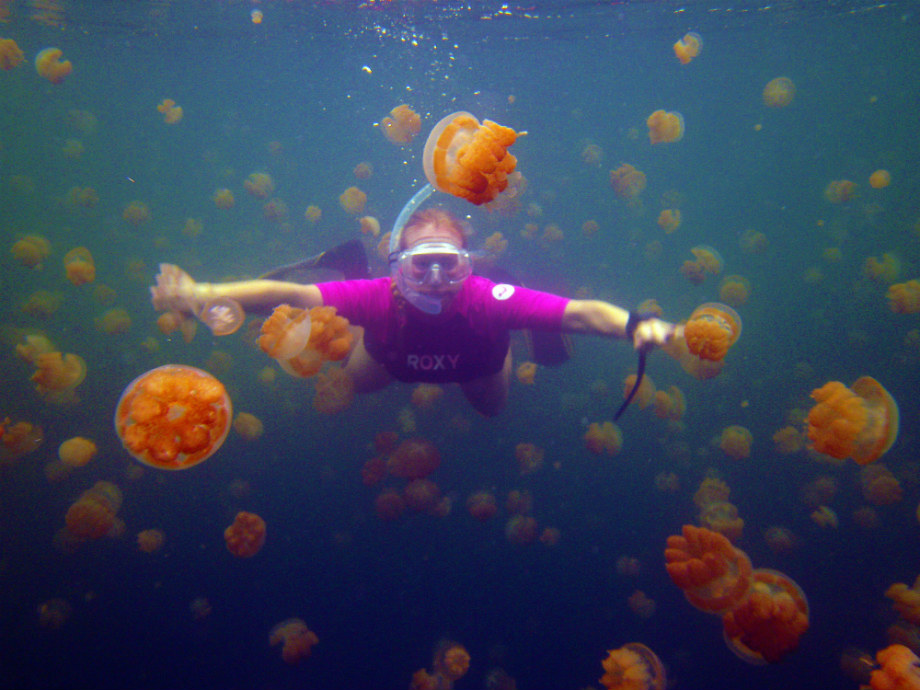 JELLYFISH-LAKE-SMARTTRAVEL-BG