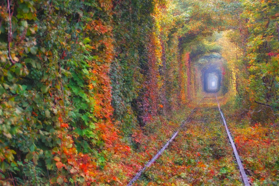 TUNNEL-OF-LOVE1-UKRAINE-small-SMARTTRAVEL-BG